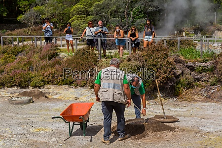 workers take out cozido in furnas